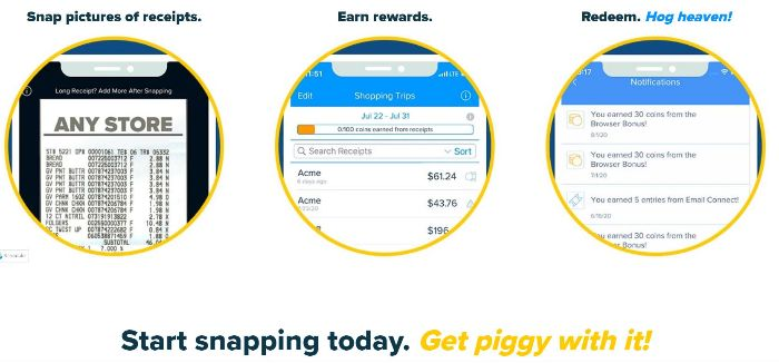 How receipt hog works to earn paypal money