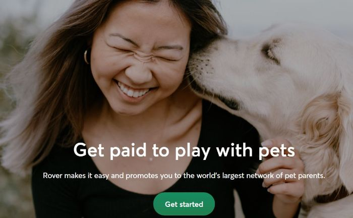 Have fun with pets and get paid for it